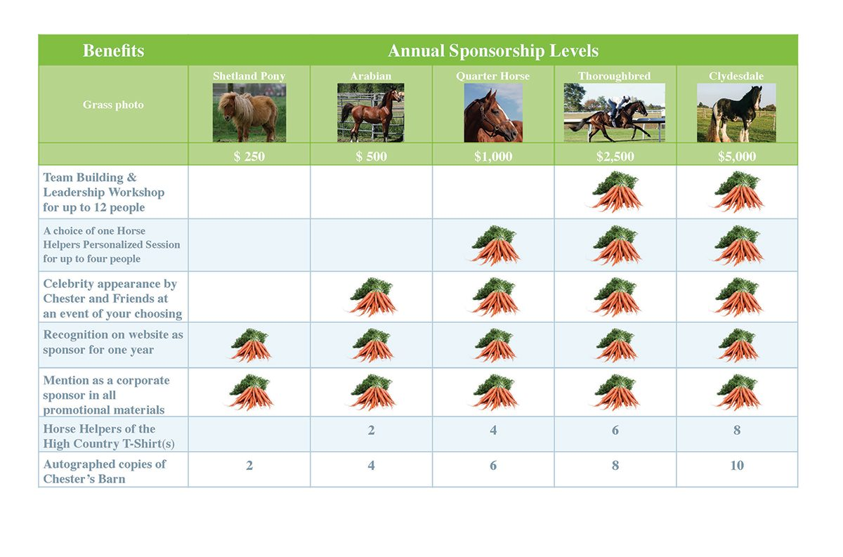 Horse Helpers Sponsorship Levels
