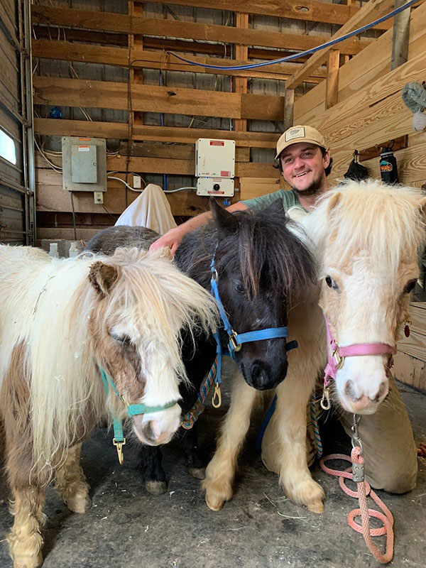 3 Ponies and a Horse Helper