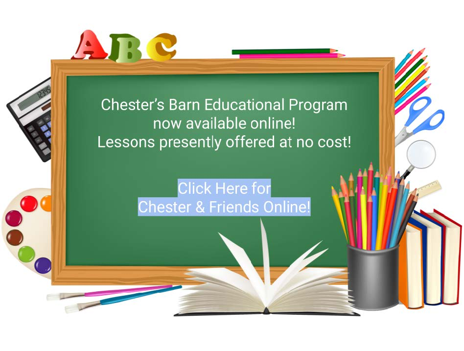 Chester's Barn Lessons Graphic
